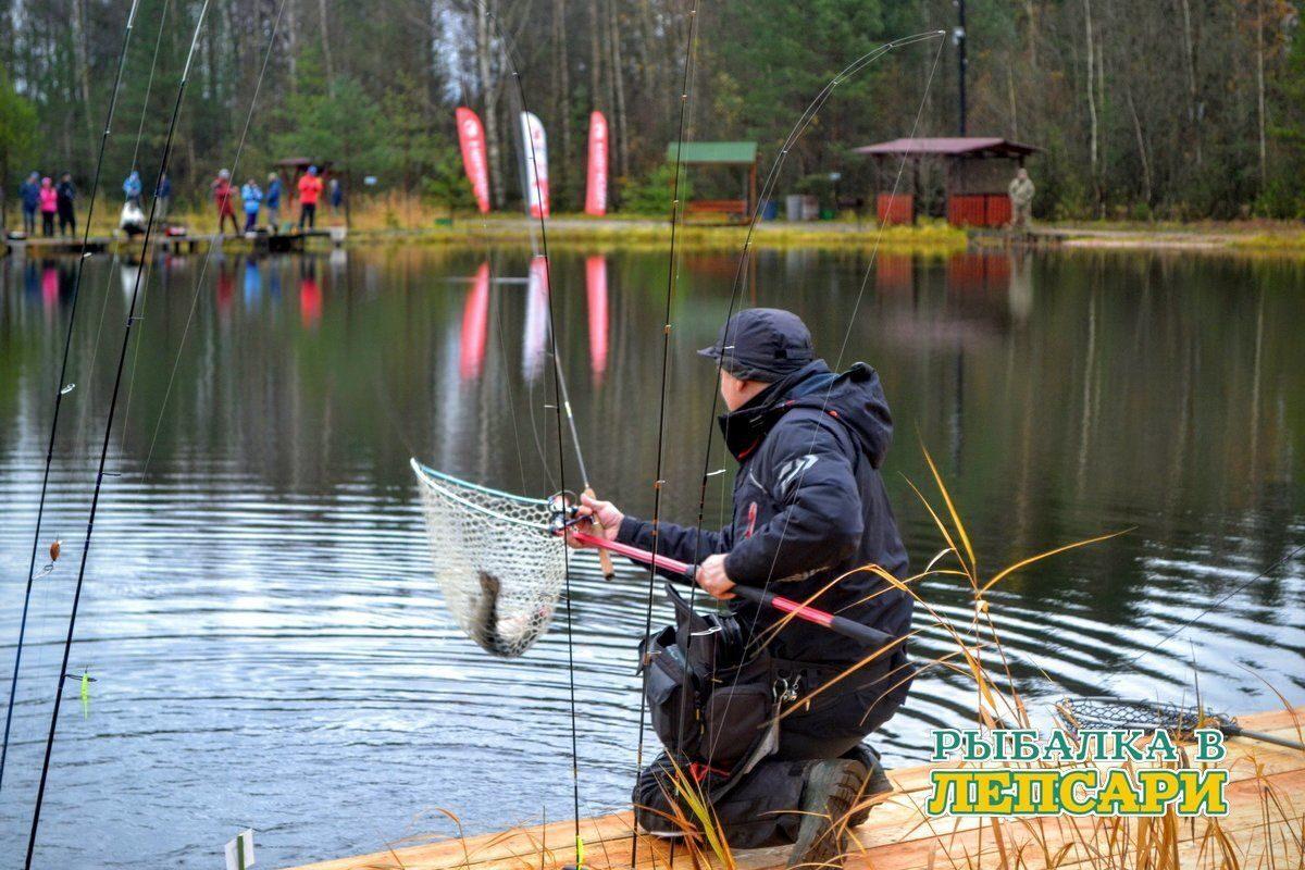 хорошие платники для рыбалки